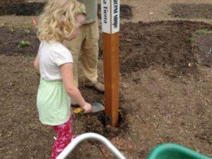 Corcoran-Community-Garden-Peace-Pole-planting-Minnesota-USA_01