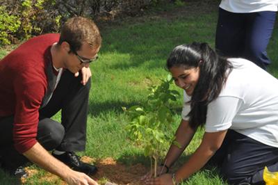 Plant-A-Tree-For-Peace-peace-Tour-in-Dubai-02